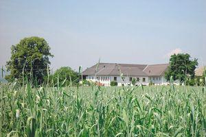 Biohof Ganser St. Ulrich